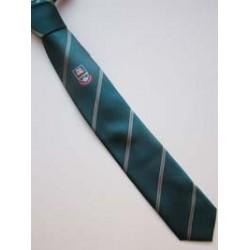 St Kilian's Snr Tie