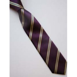 St. kilian's Jnr Tie