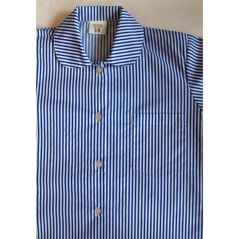 Blue Stripe Gingham Blouse (To 4th Class Only)