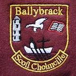 St. Colmcille's NS Ballybrack